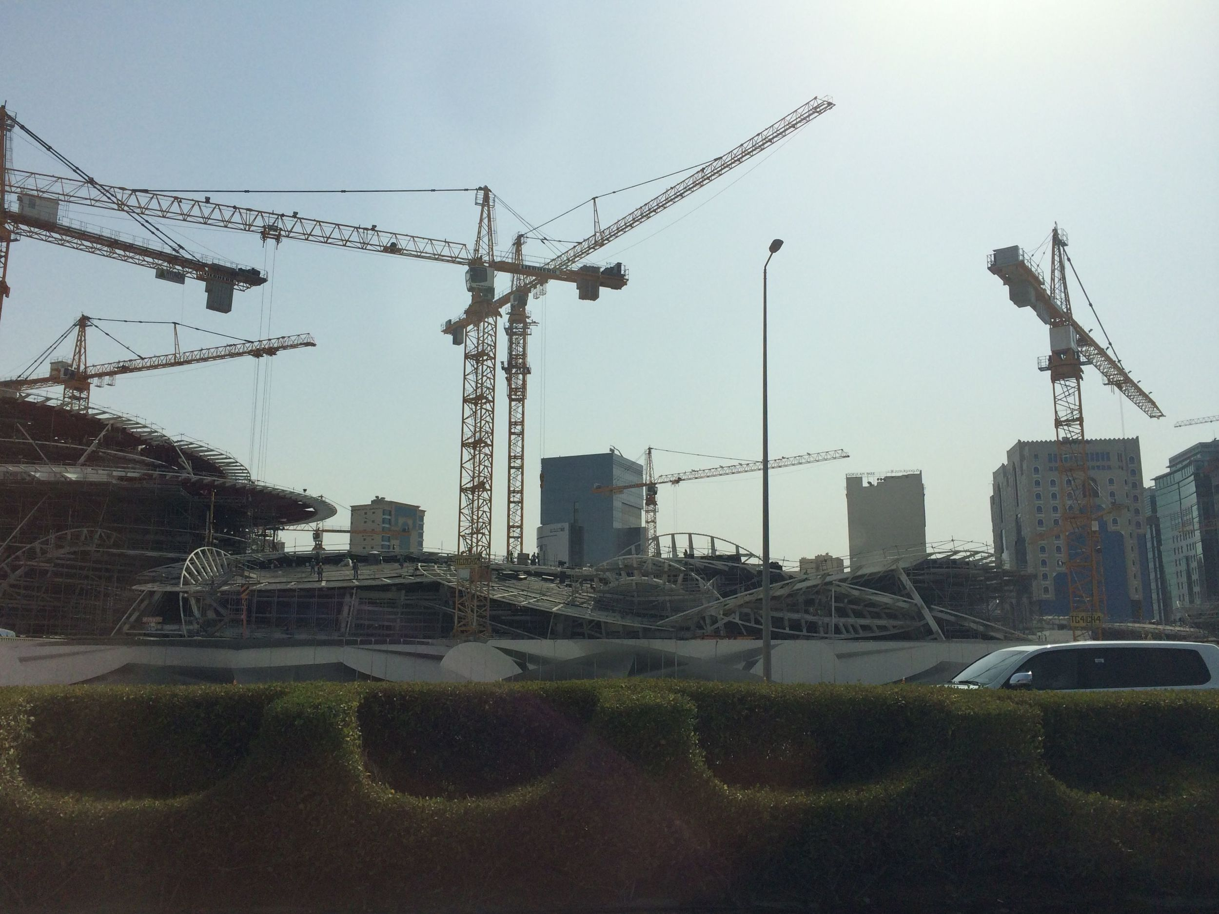 Fancy shrubbery and construction cranes in Doha, Qatar
