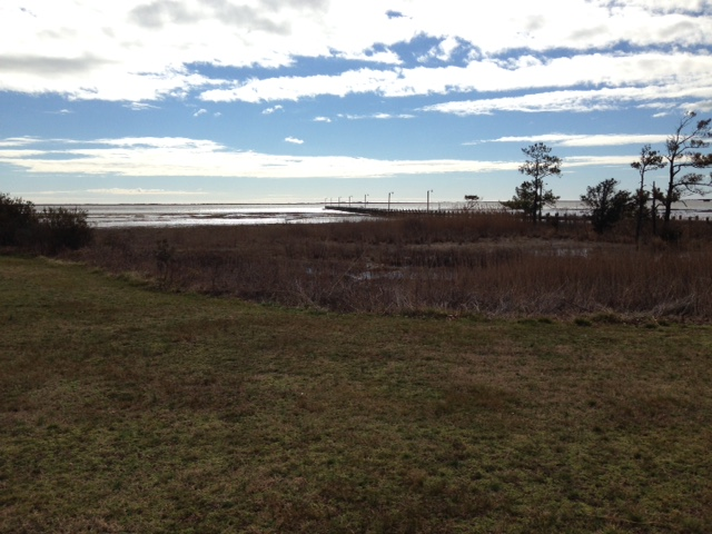 In West Ocean City, looking across the water to Assateague.