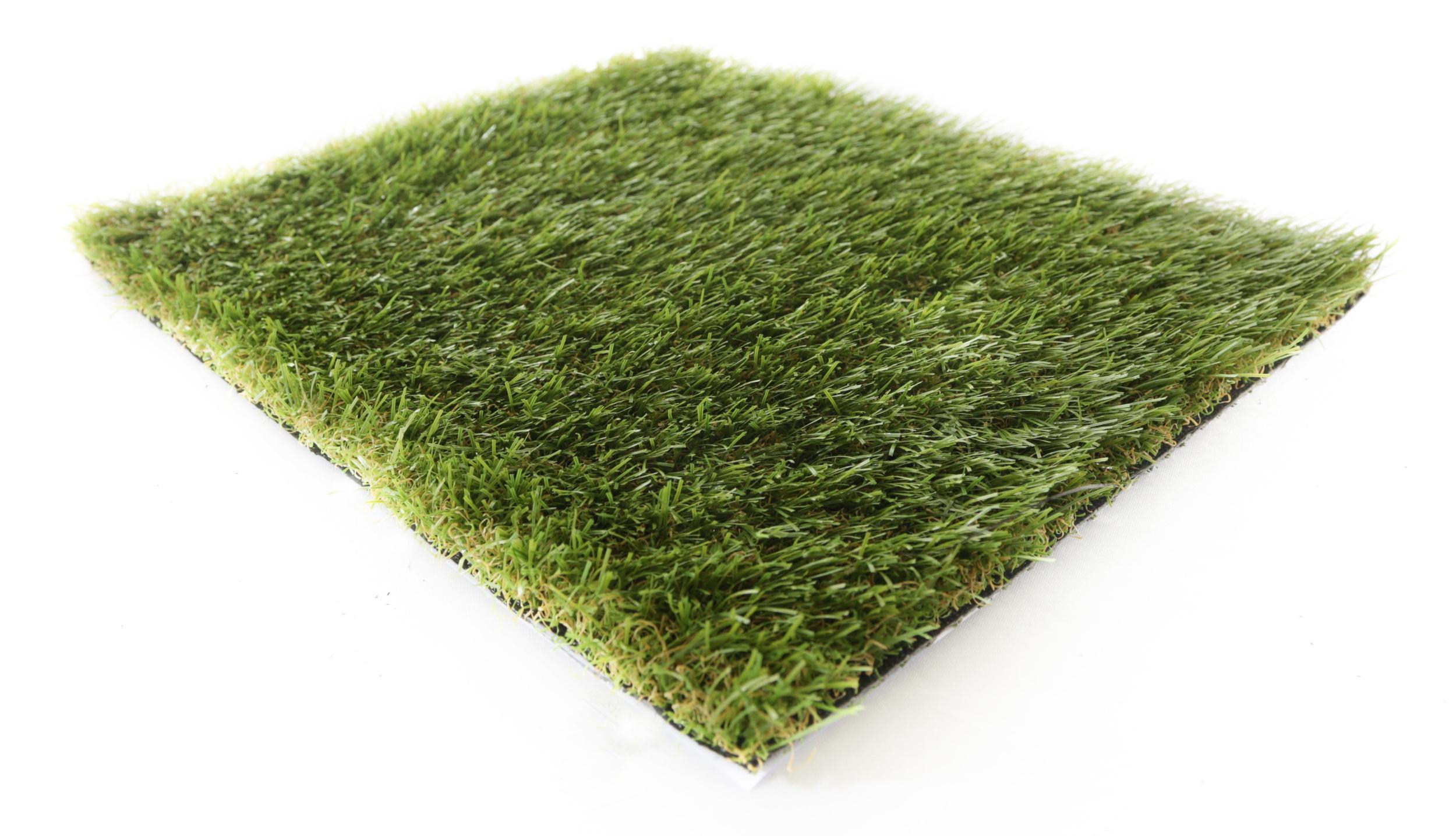 3.2 Meadow.jpg
