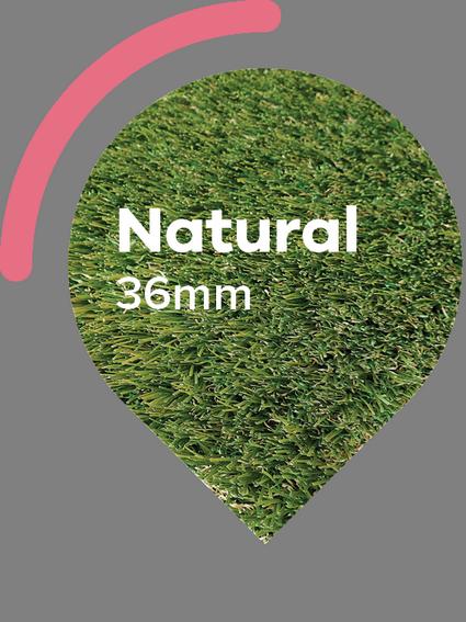 Natural Artificial Grass.png