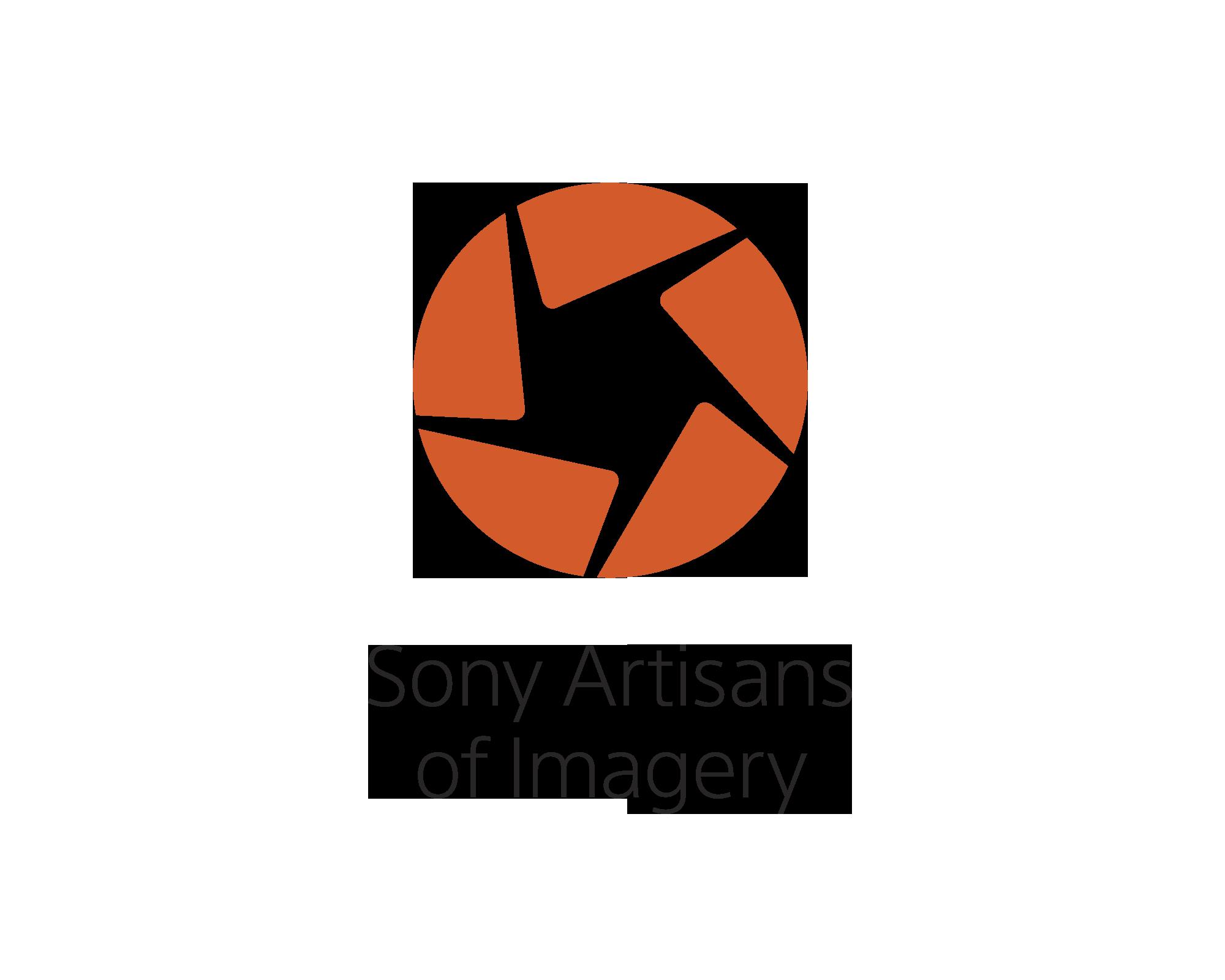 Sony_AOI_Logo_h.jpg