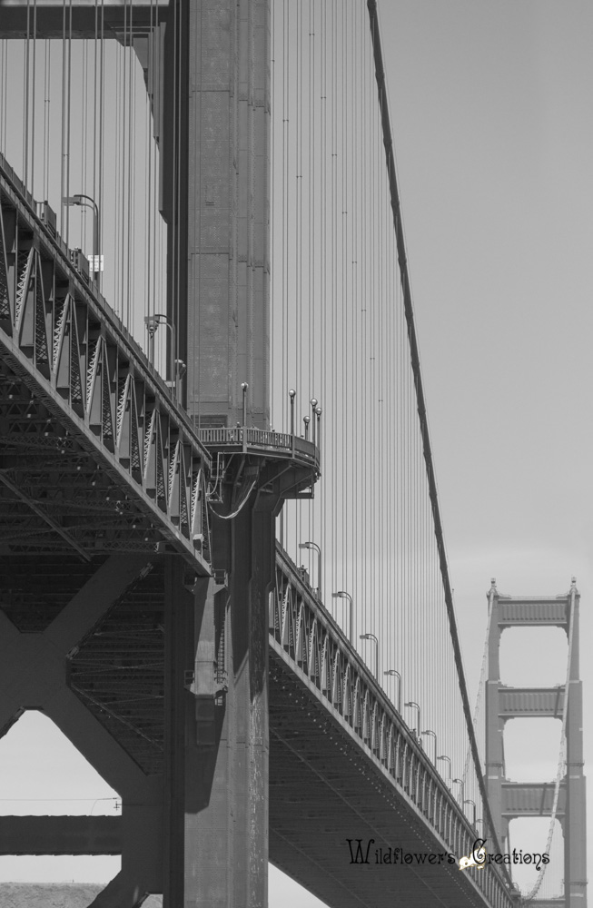 GGB - Bridge - 2012-05 detail2-Edit.jpg