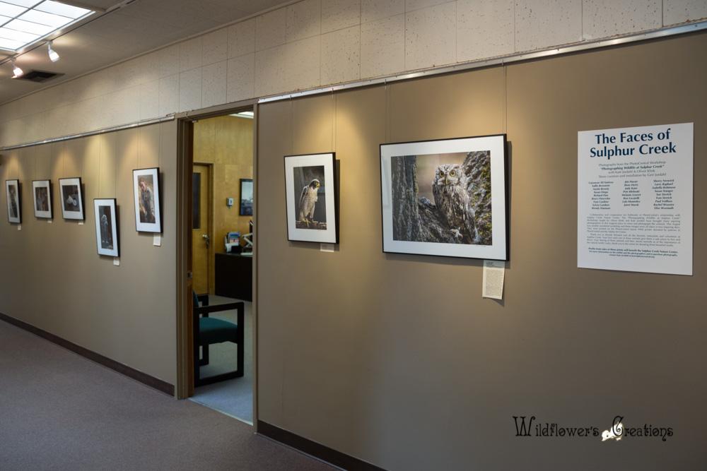 2013-10-08 Gallery04.jpg