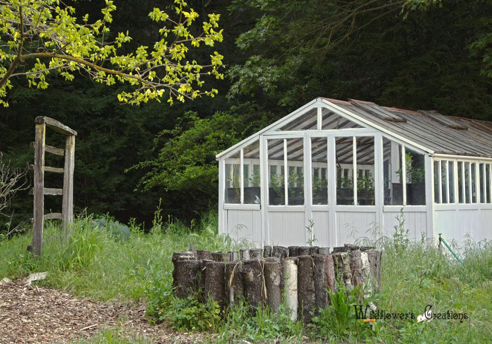 Hidden Villa - Greenhouse2 2012-04 HDR2.jpg