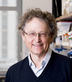 Dr. Michel Nussenzweig is working with colleagues to test broadly neutralizing antibodies in a combination cure approach in an amfAR-supported clinical trial.