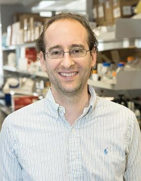 Dr. Andrés Finzi