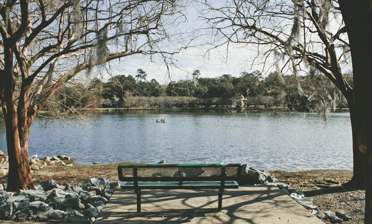 View of Lake Ella, sans creepy ducks