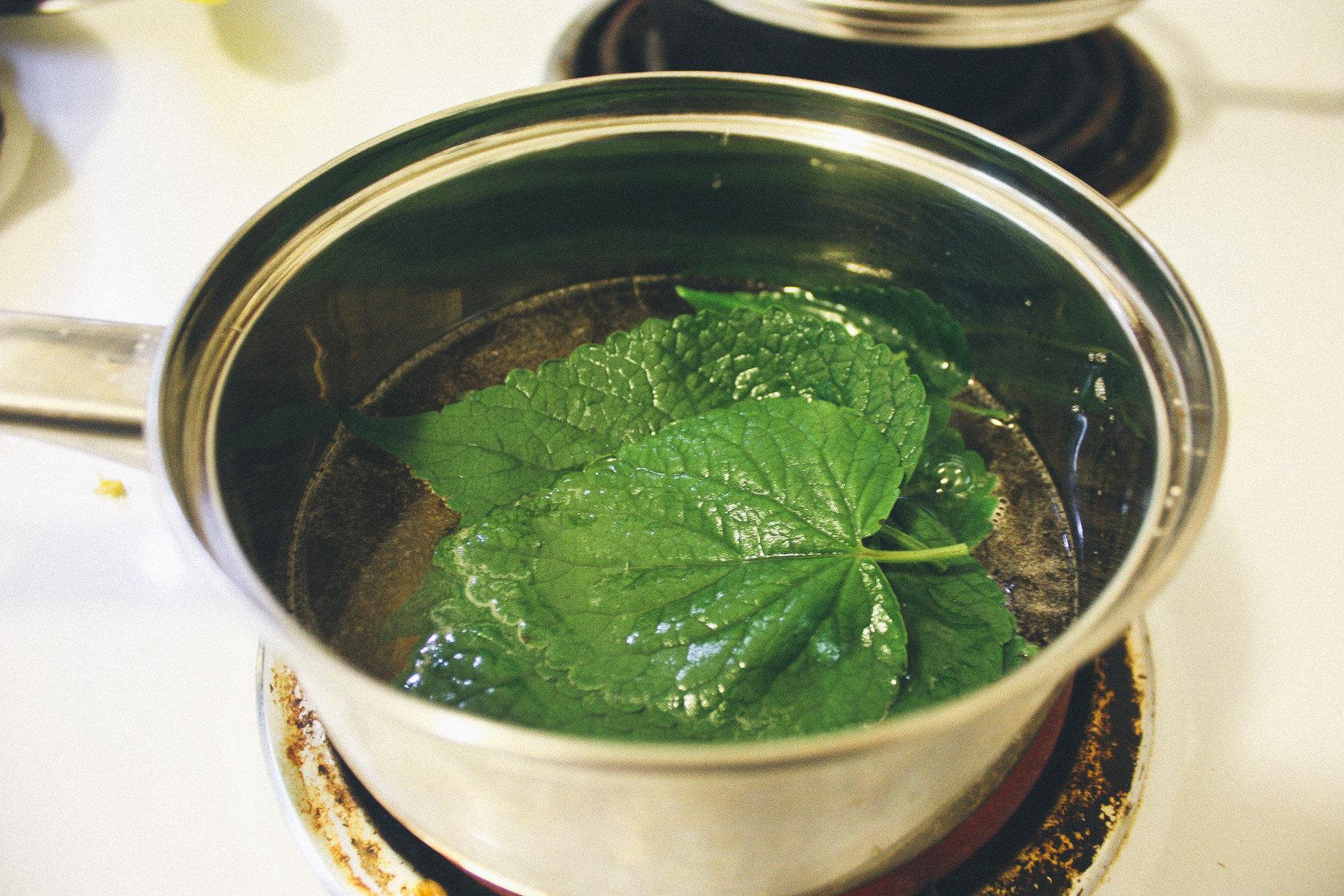 herb_11.jpg