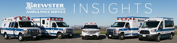 Brewster Insights newsletter header