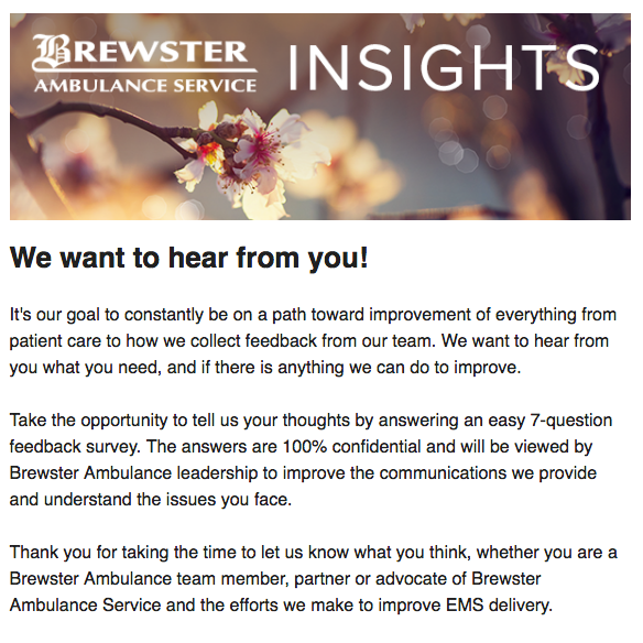 Brewster Insights March issue