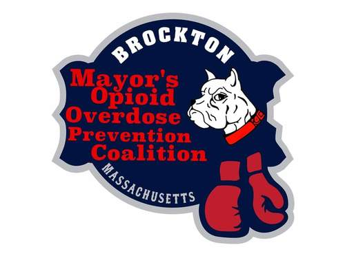 Brockton's Champion Plan