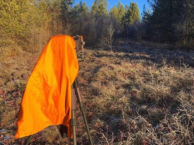 My favorite color for outdoor gear is orange. @wandererphotogear & @gilla_pie made that happen! Lightweight and I'll never loose my camera in the woods...again! 😉 #largeformat #photogear #wandererphotogear