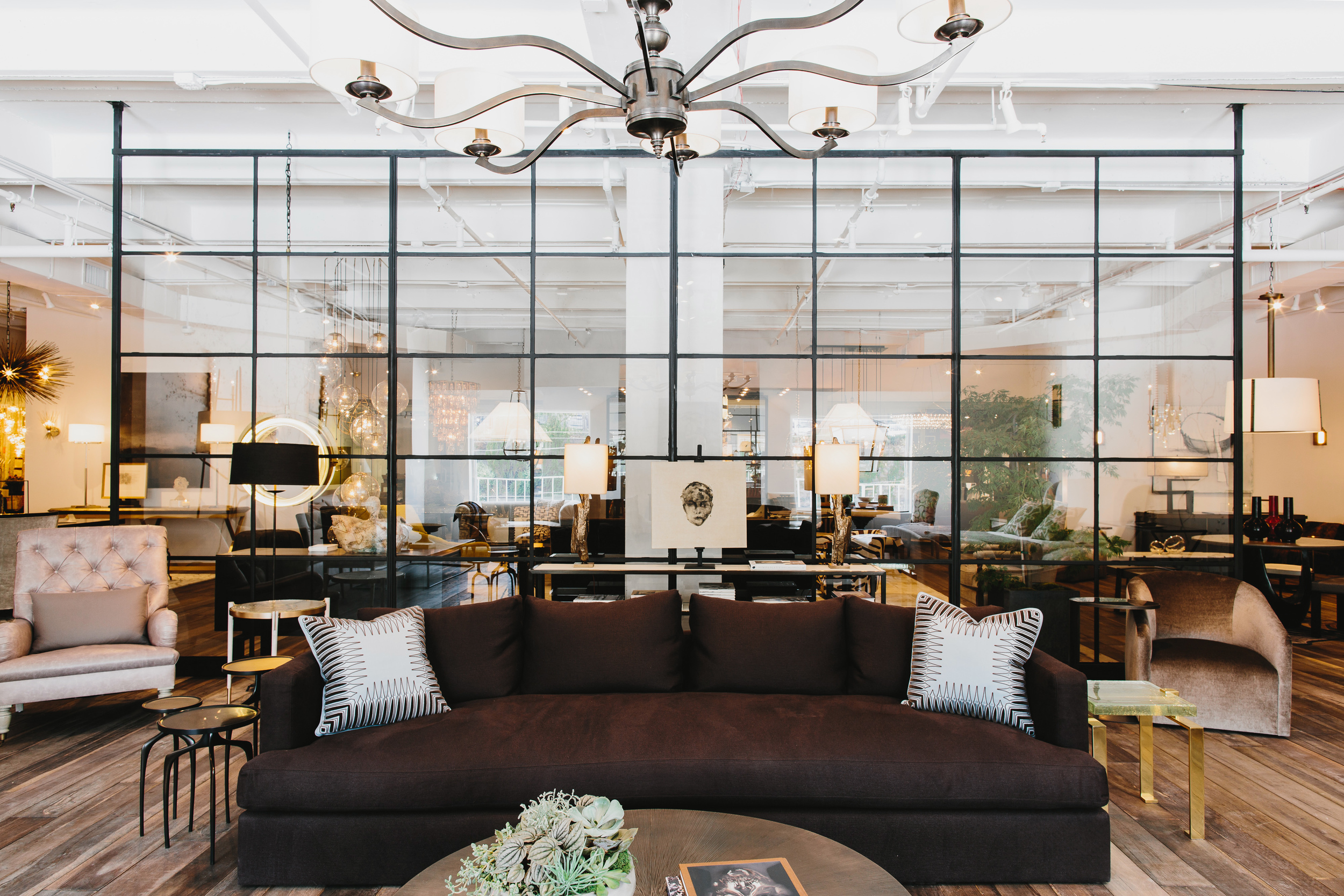 R Hughes Showroom | Smith Hanes. showroom steel and glass window