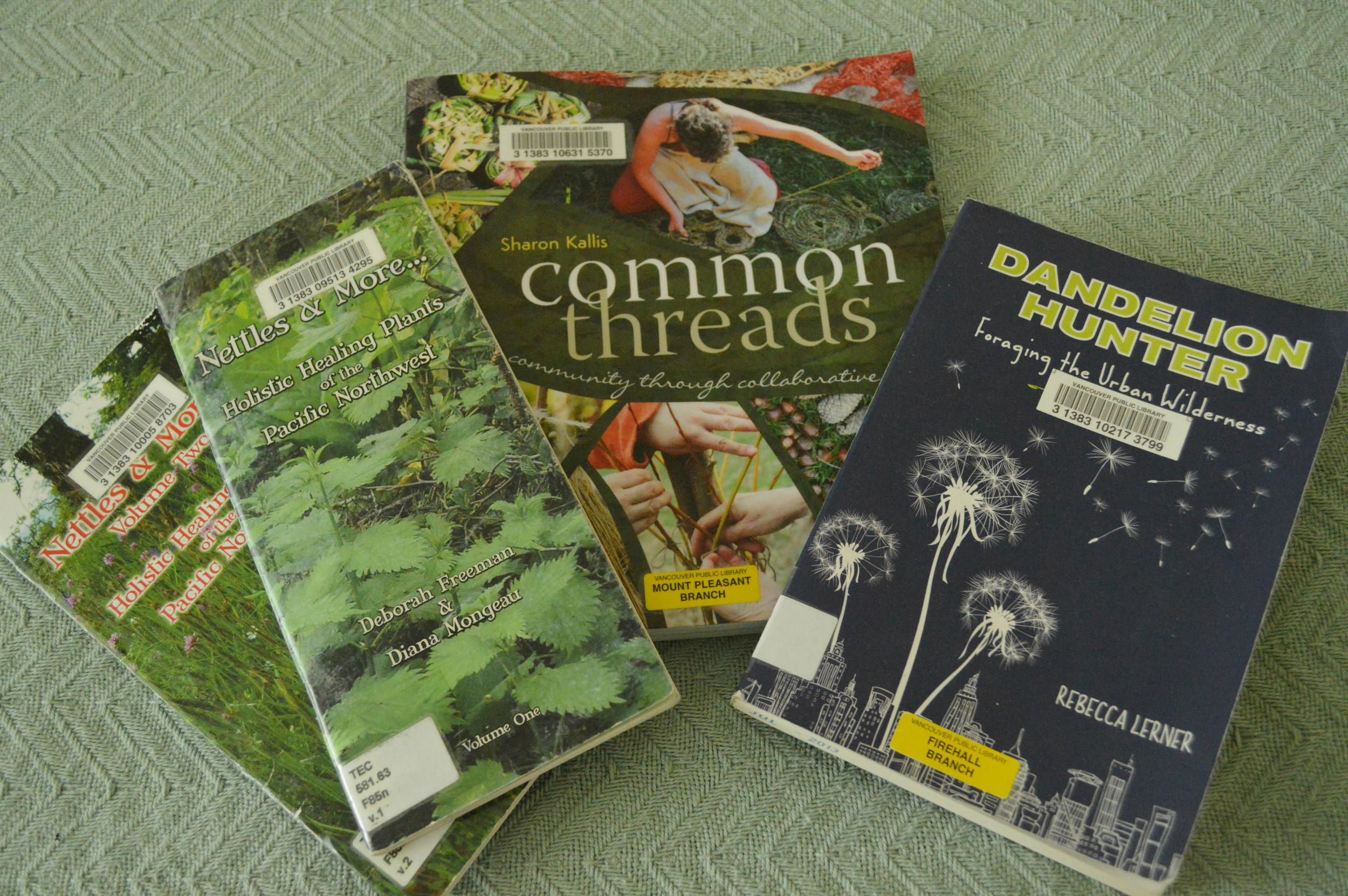 The Nettles & More...  series from Deborah Freeman and Diana Mongeau,  Common Threads  by Sharon Kallis, and  Dandelion Hunter  by Rebecca Lerner.