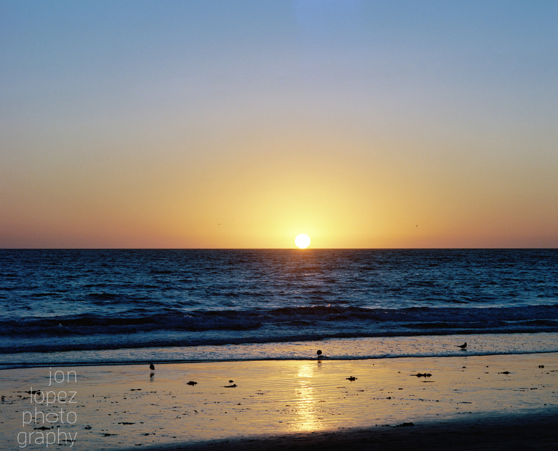 Santa Monica, CA sunset, shot on Kodak Portra 400.