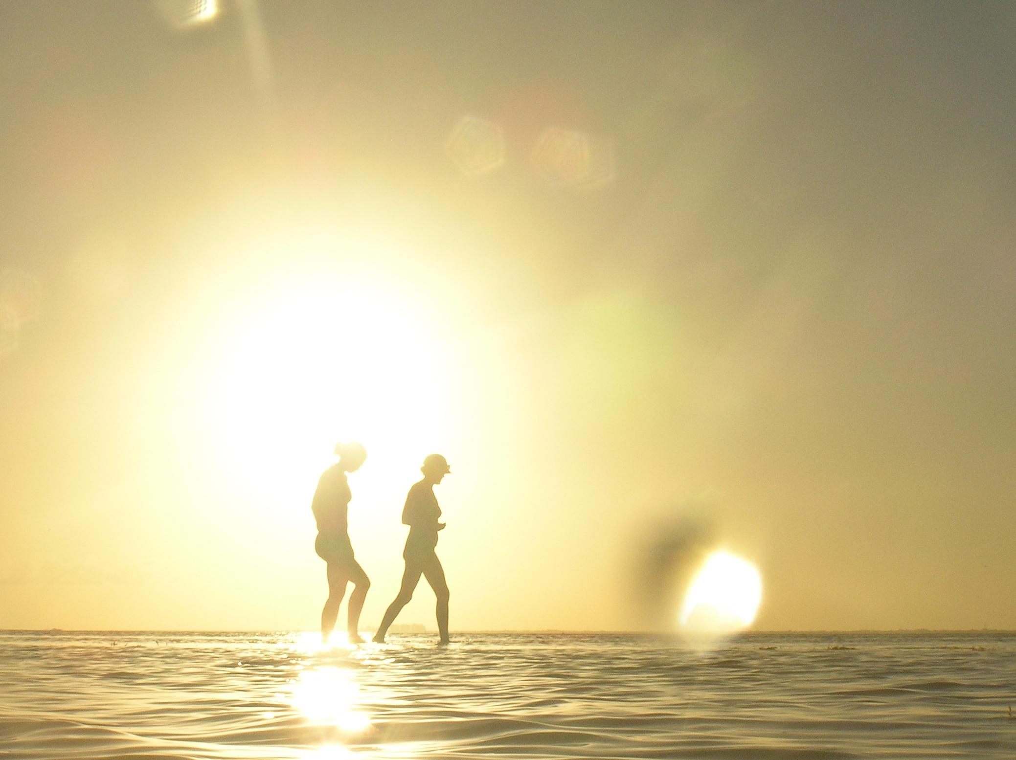alue optics sunglasses backlit sandbar