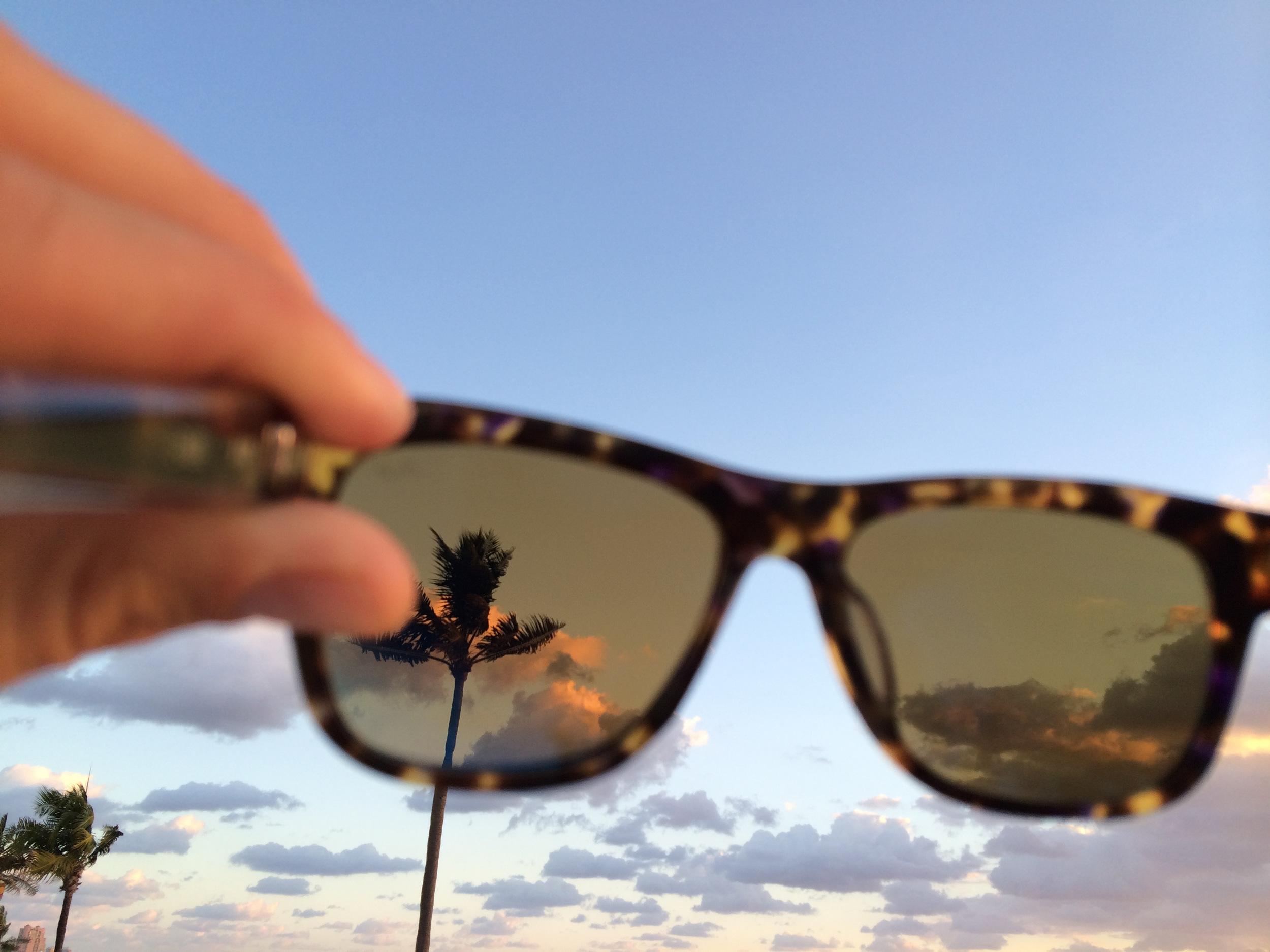 Palms and sky.