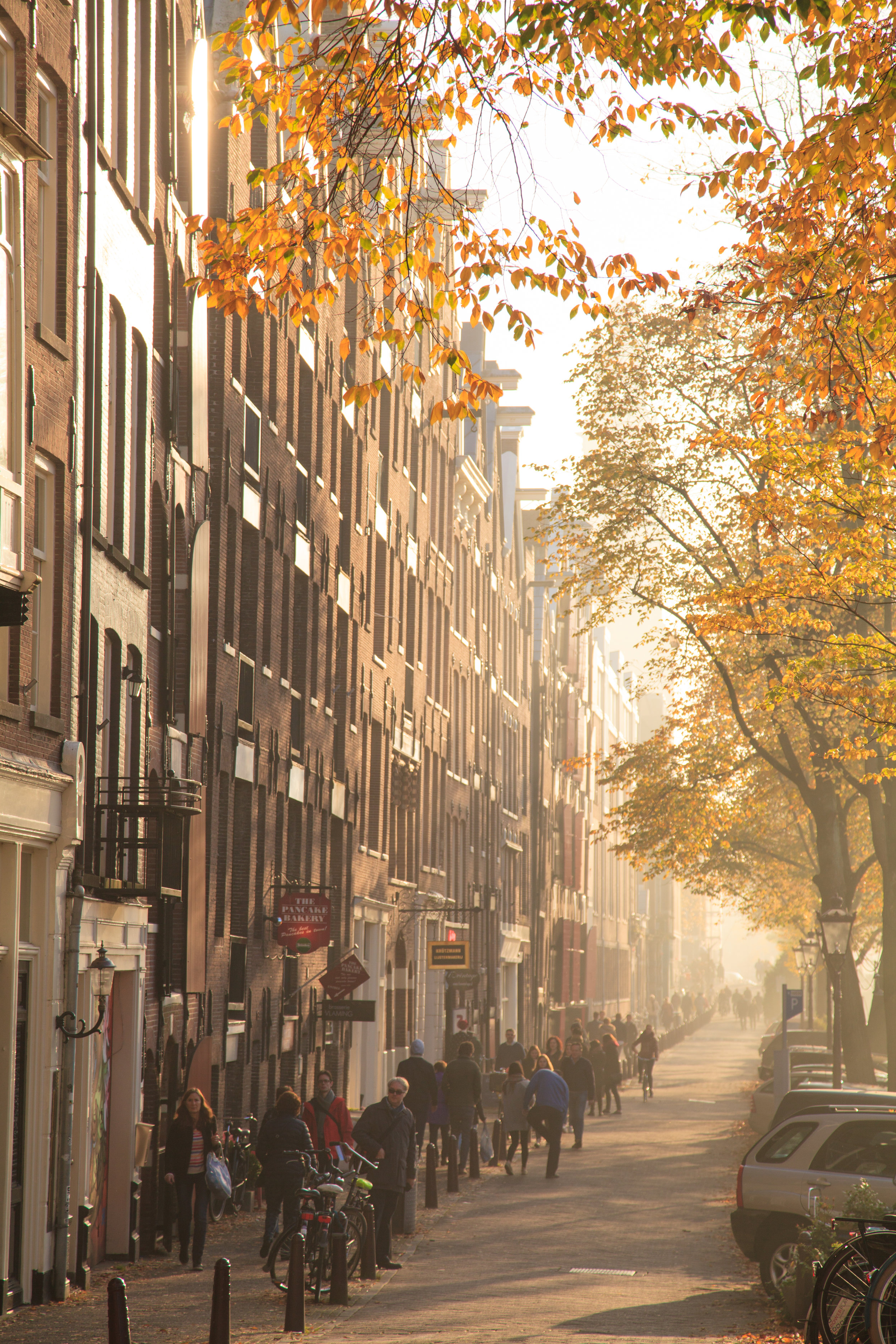 Prinsengracht street scene.