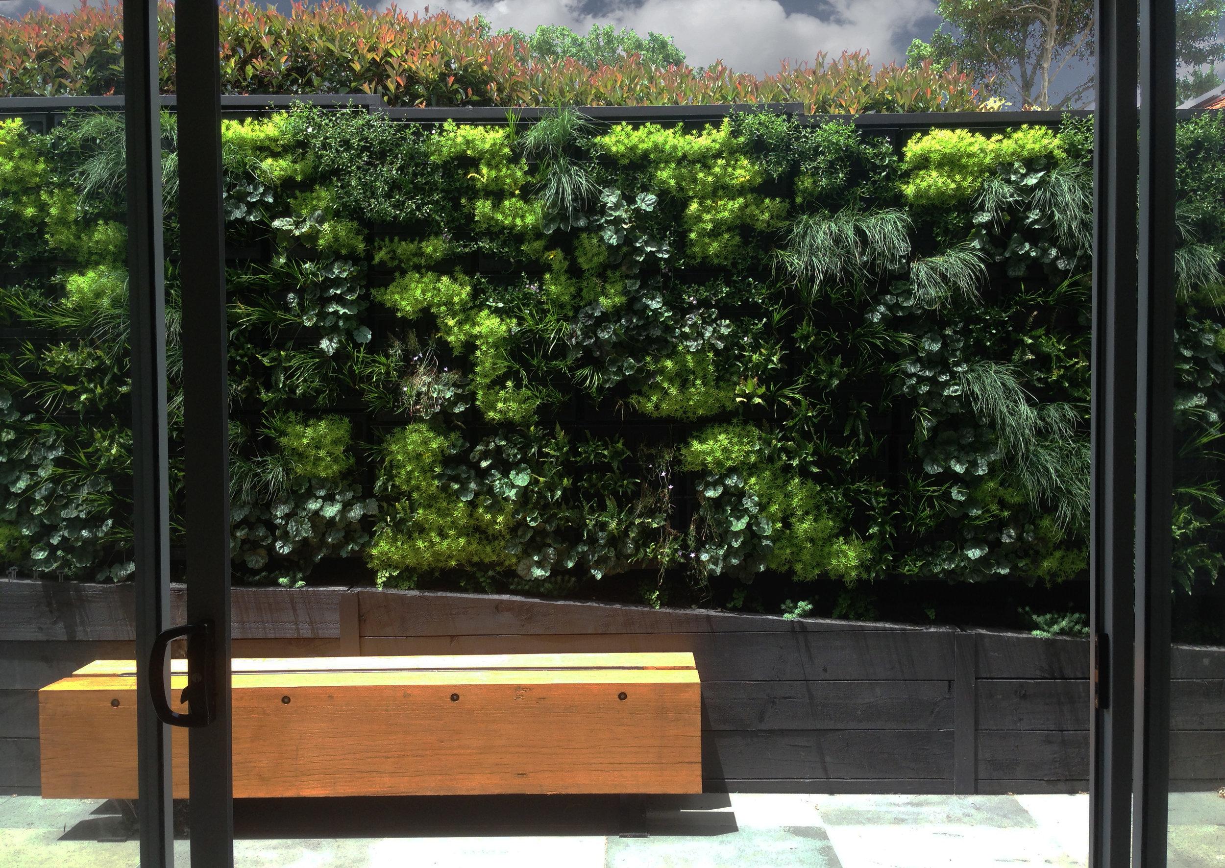AKAS Landscape Architecture - Ivanhoe 1.jpg