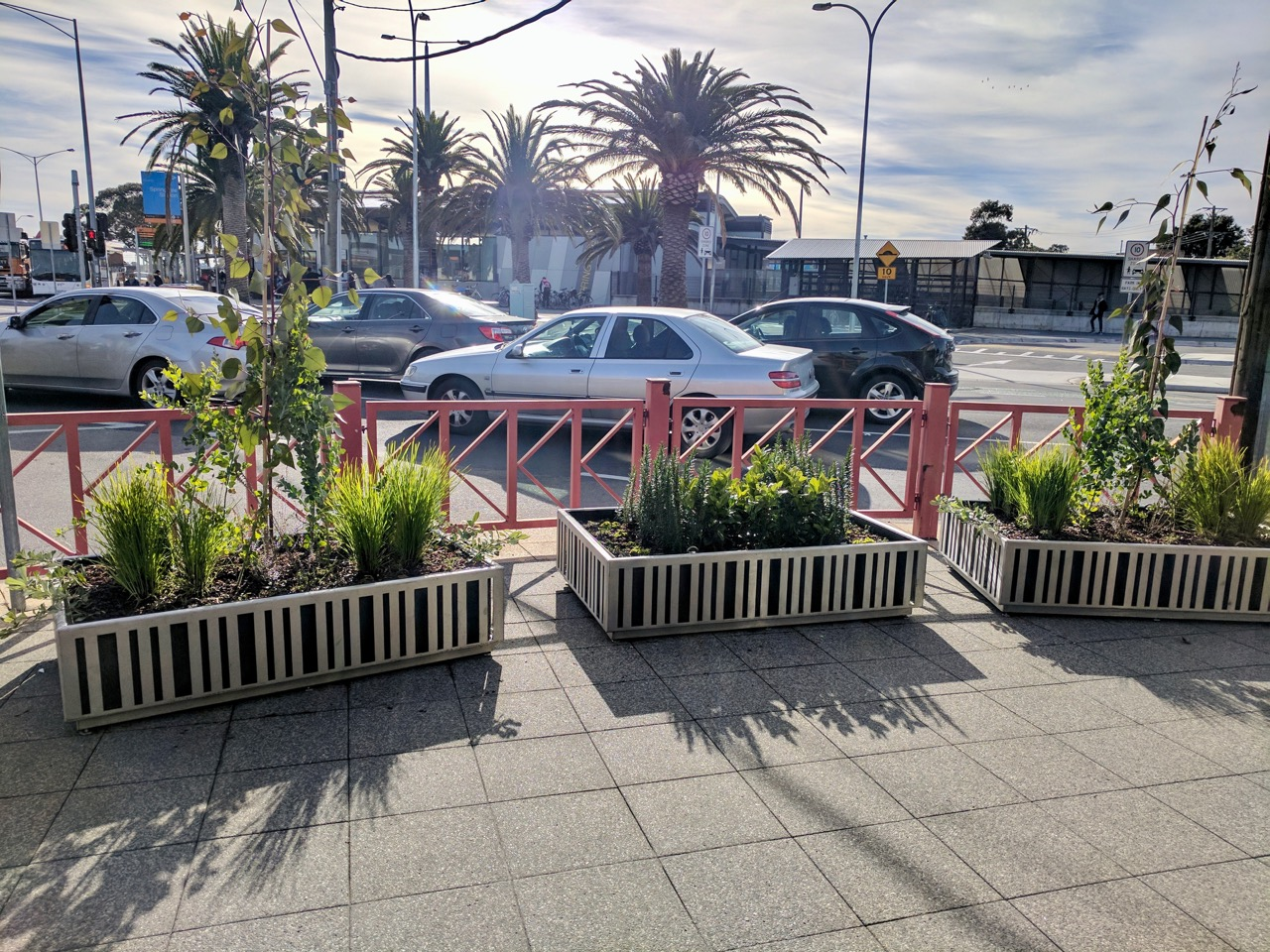 Container Gardens - Springvale