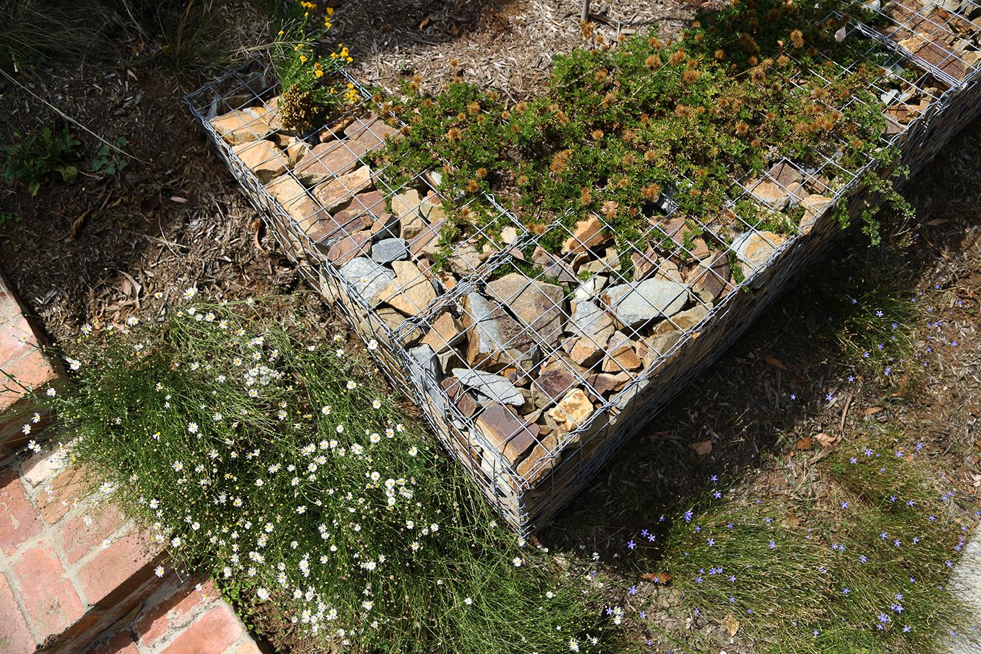 Indigenous Garden - Bundoora