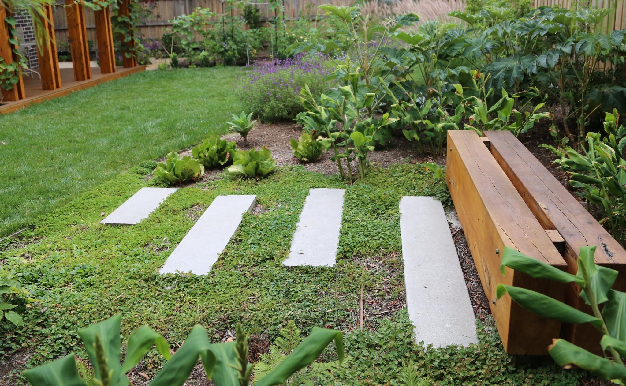 Garden Design - Alphington