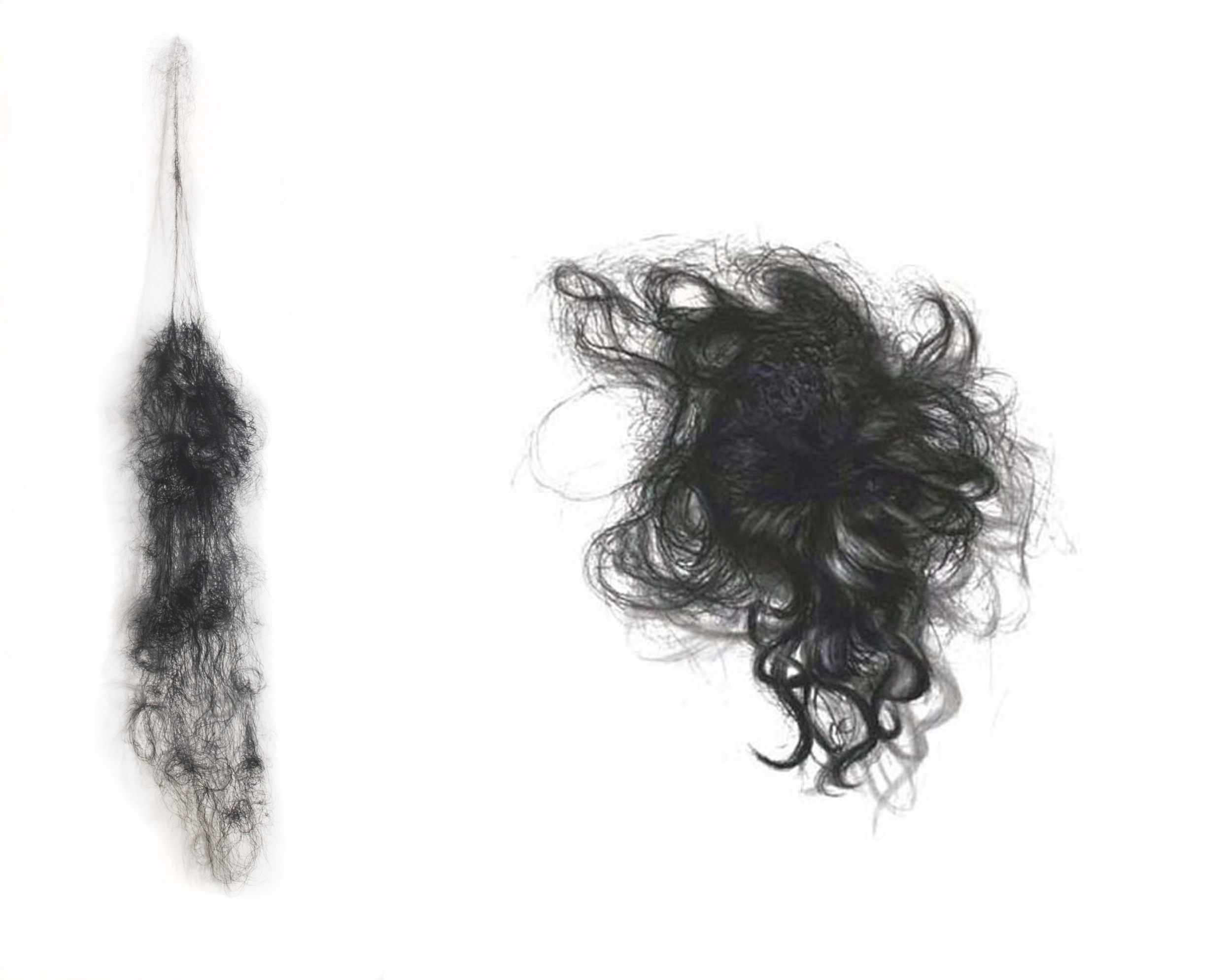 hairpieces.jpg