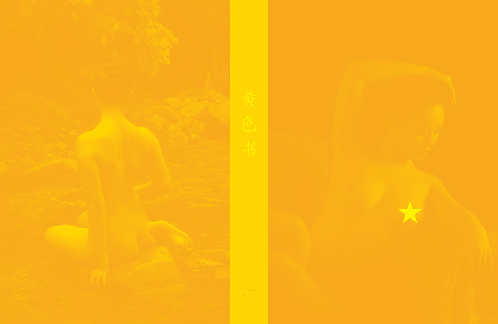 yellowbook-cover-1.jpg