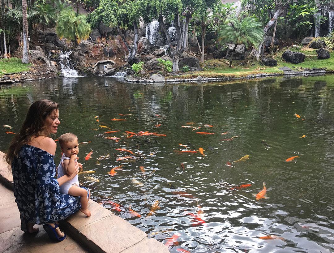 Kona_Hawaii_2017_viajes_05.jpg