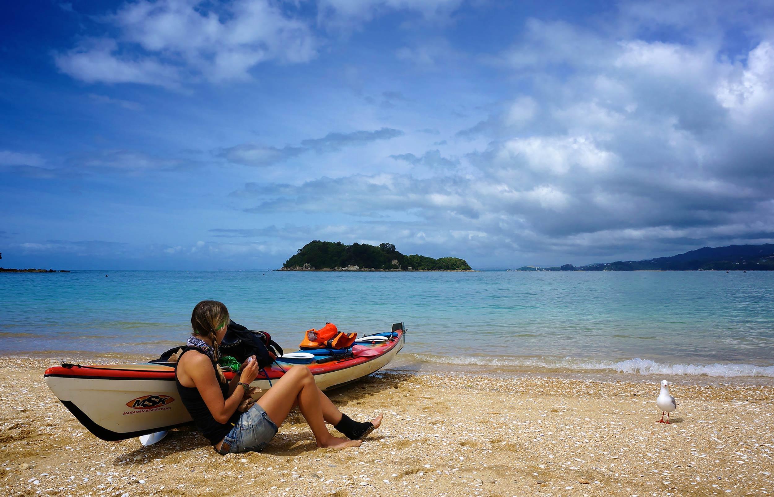 abel_tasman_kayak_candice_beach_seagull.jpg