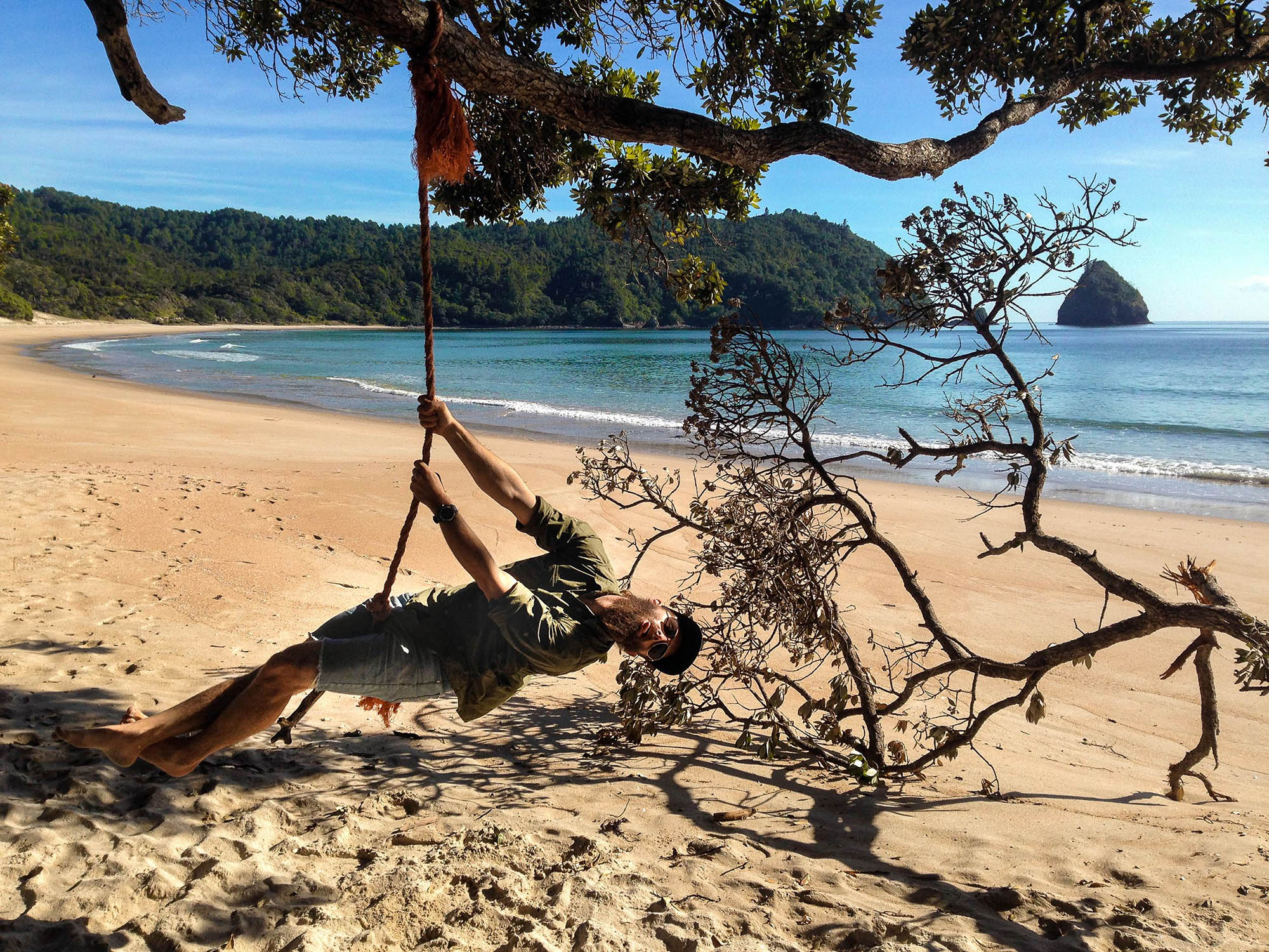ahipara_beach_tree_swing.jpg