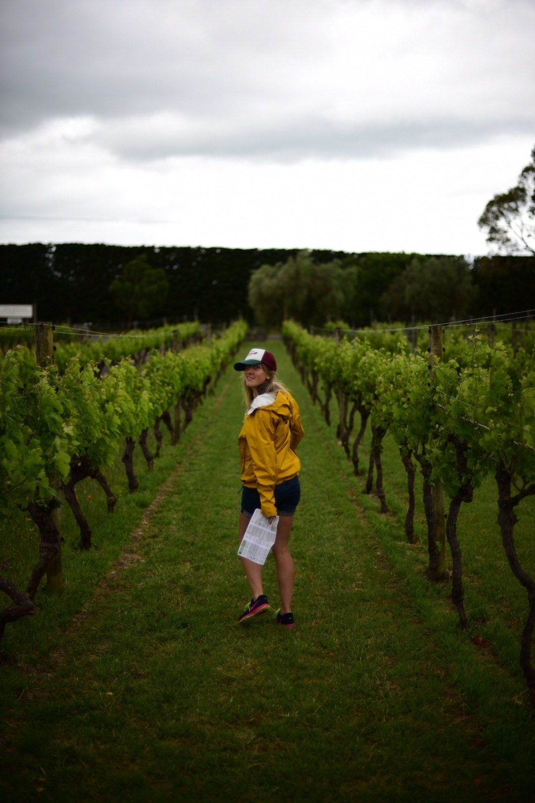 candice_martinborough_vineyard.JPG