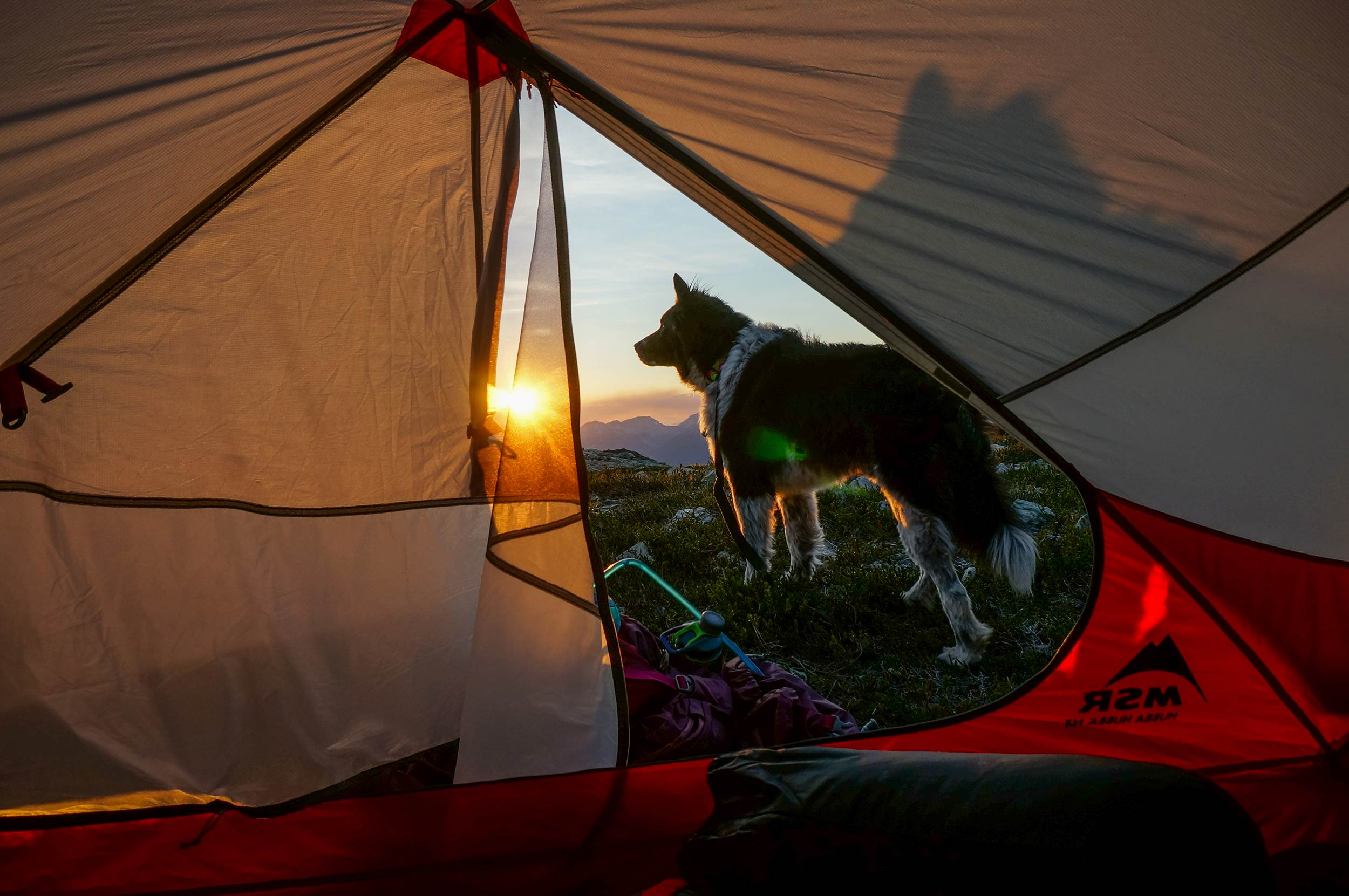 sproatt_alpine_trail_nugget_msr_tent_sunset.jpg