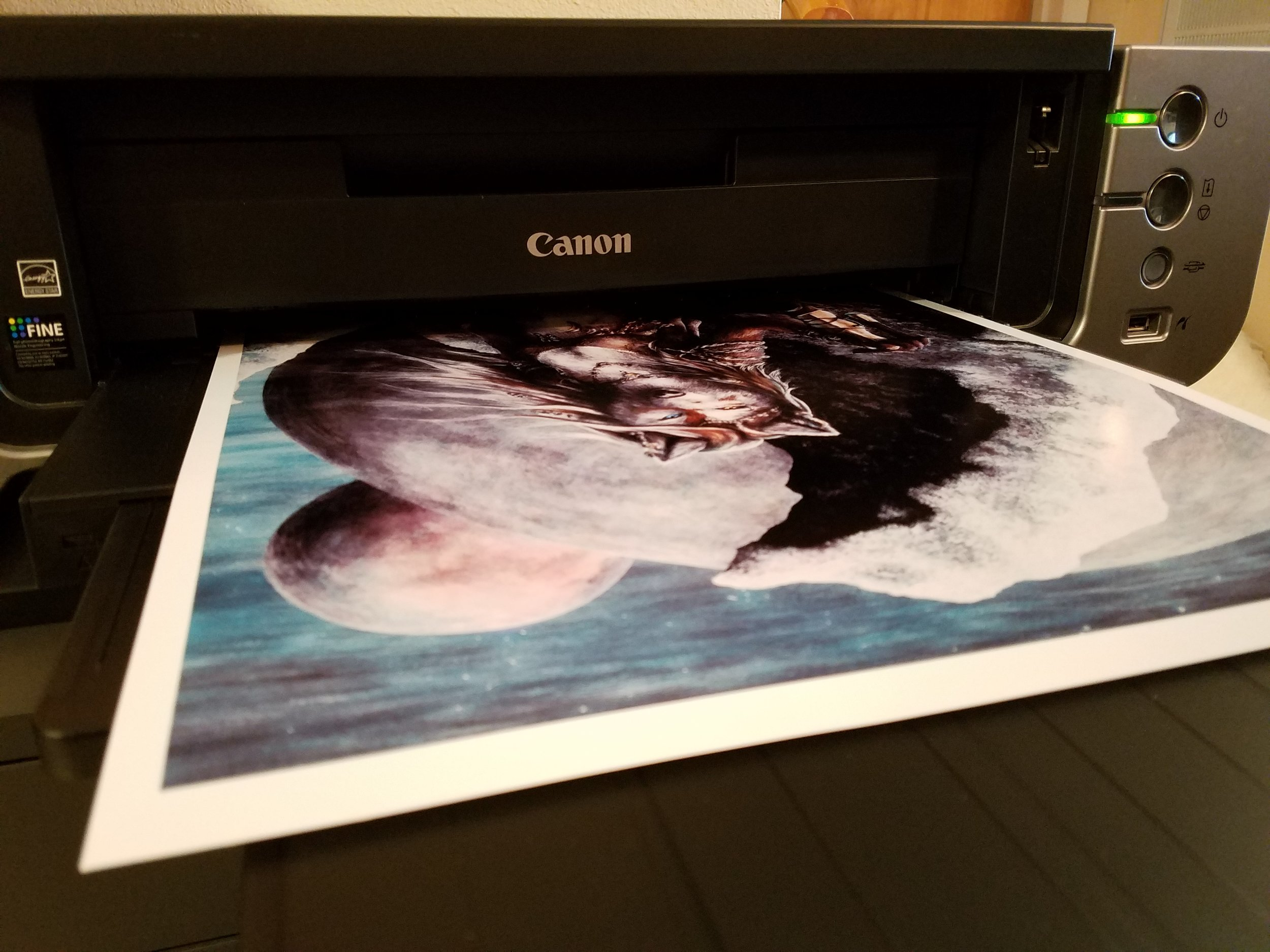 Prints are forged with a Canon PIXMA Pro9000 and several types of premium inkjet paper.