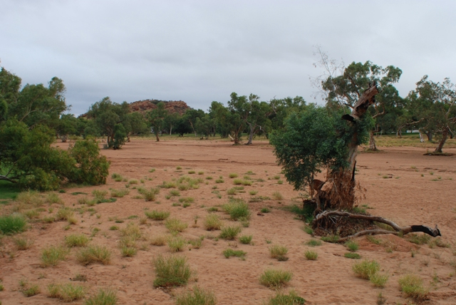 Todd River, Alice Springs