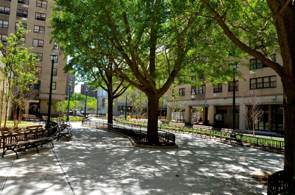 Courtyard Landscaping 1.JPG