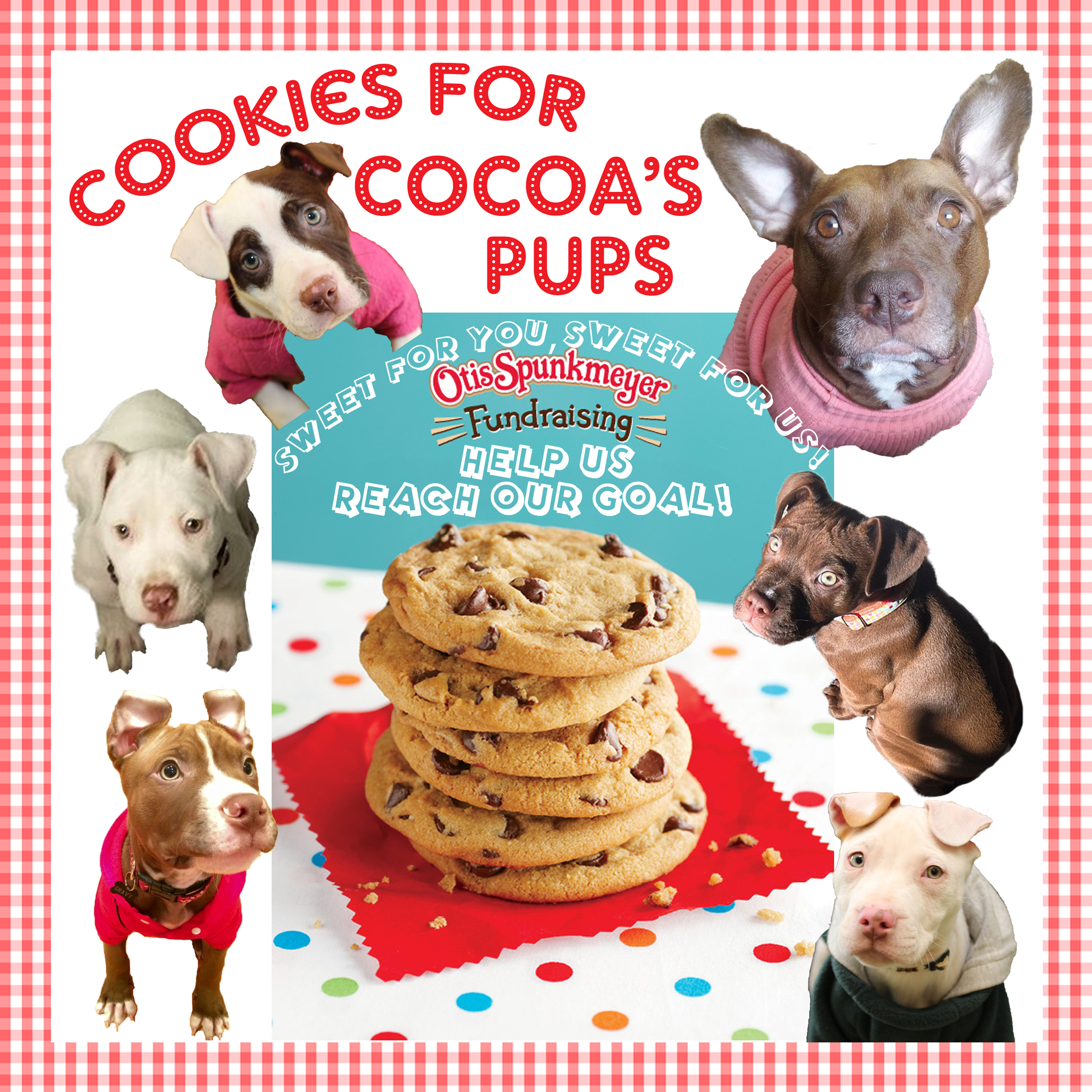 cookies for cocoa's pups framed.jpg