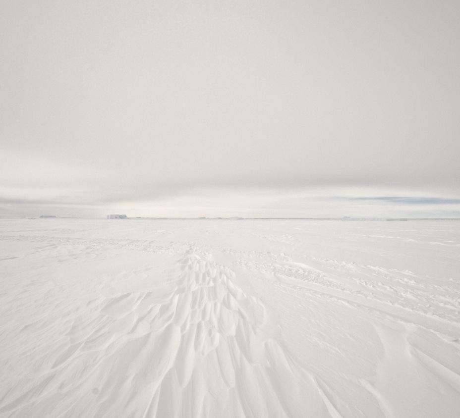 Lars-Focke-Photography11.jpg