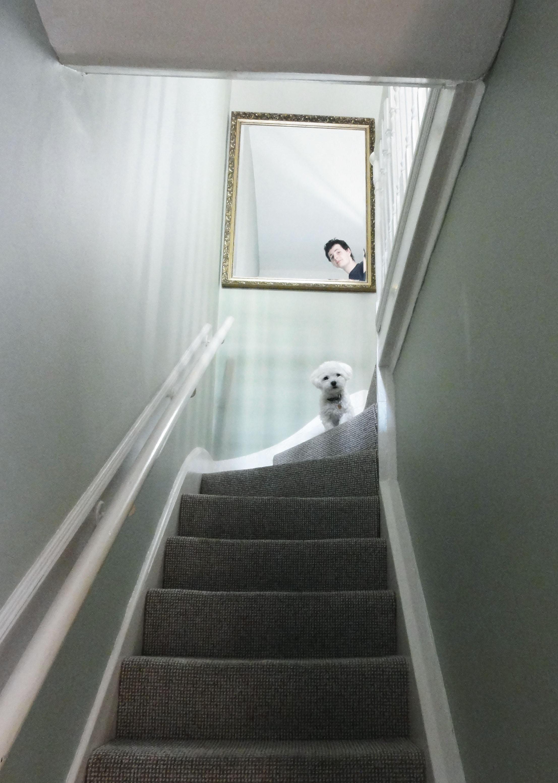 How frappante lives? #10 Finally settled down...? • baraperglova.com/blog