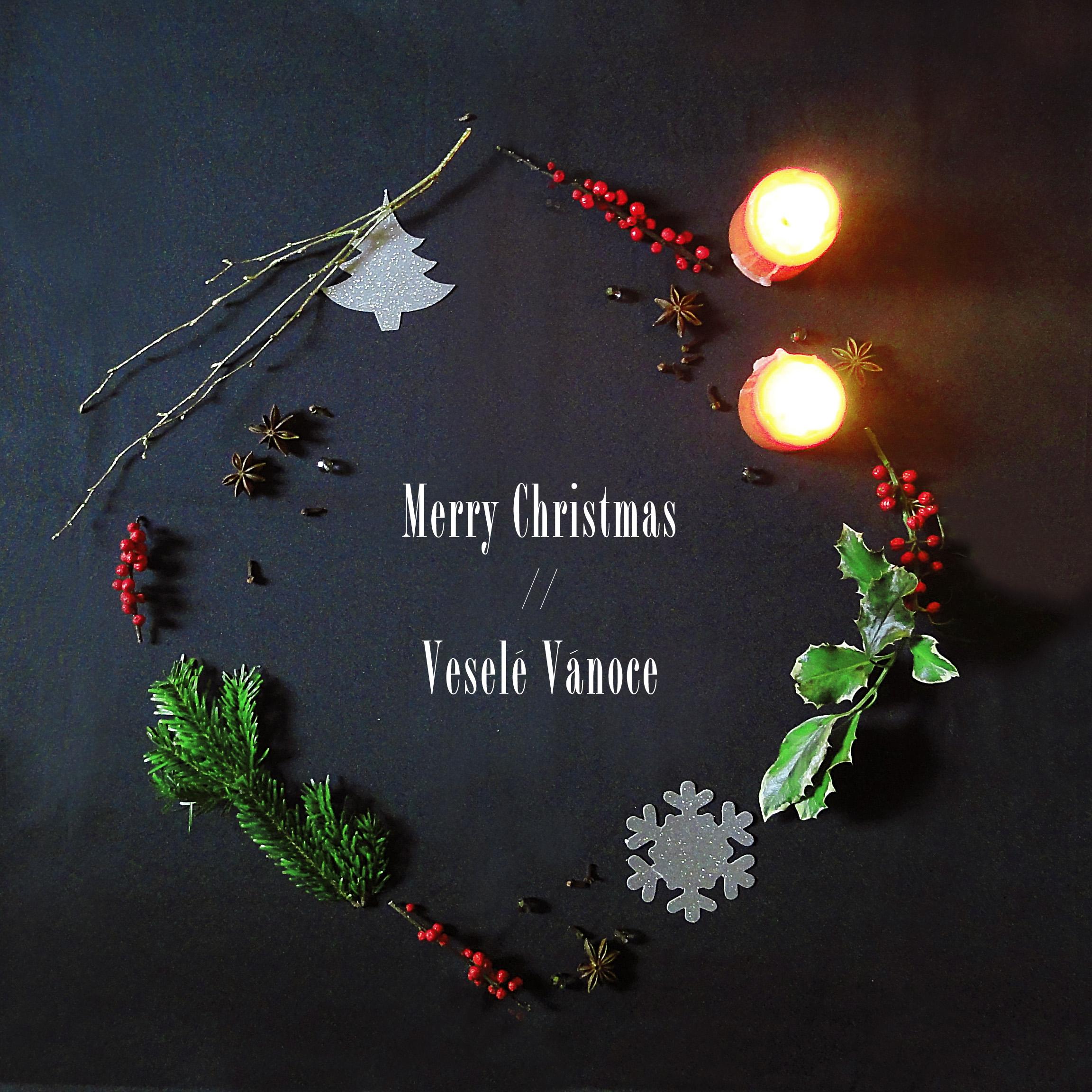 Thank you, Merry Christmas. • baraperglova.com/blog