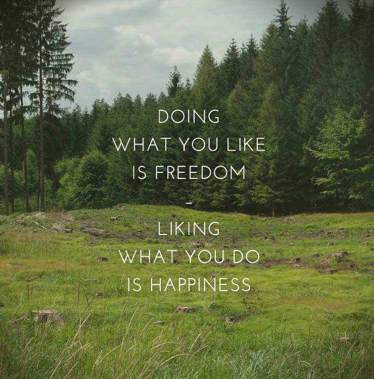 Doing what you like is freedom. Liking what you do is happiness. • baraperglova.com/blog
