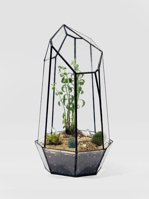Alternative to Winter Garden. • baraperglova.com