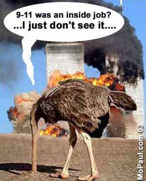 911_ostrich