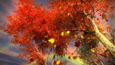 leaf_storm