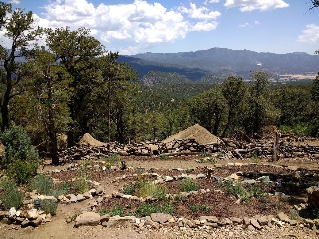 Mel's new native garden and part of Seth's BMX jumps below them.