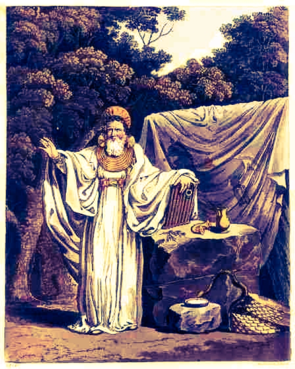 "An Arch Druid in judge's robes. By S.R. Meyrick and C.H. Smith, from ""The Costume of the Original Inhabitants of the British Islands."""