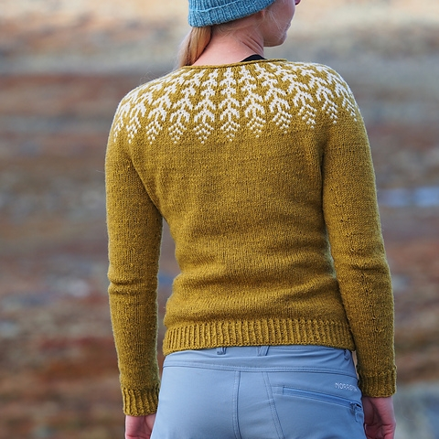 Fern & Feather knit by chomolhari