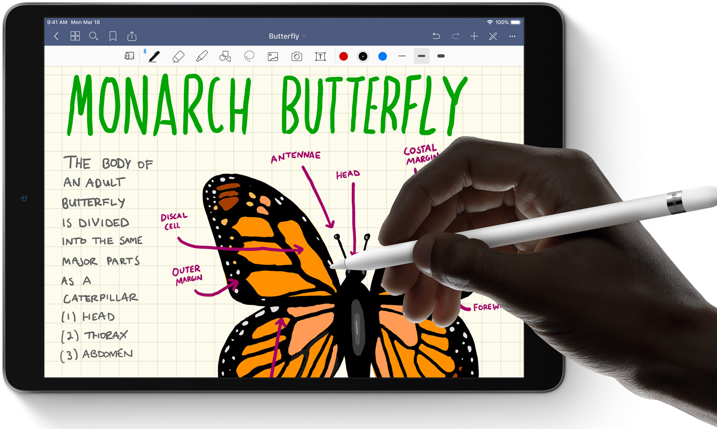 apple ipad air pencil.jpg