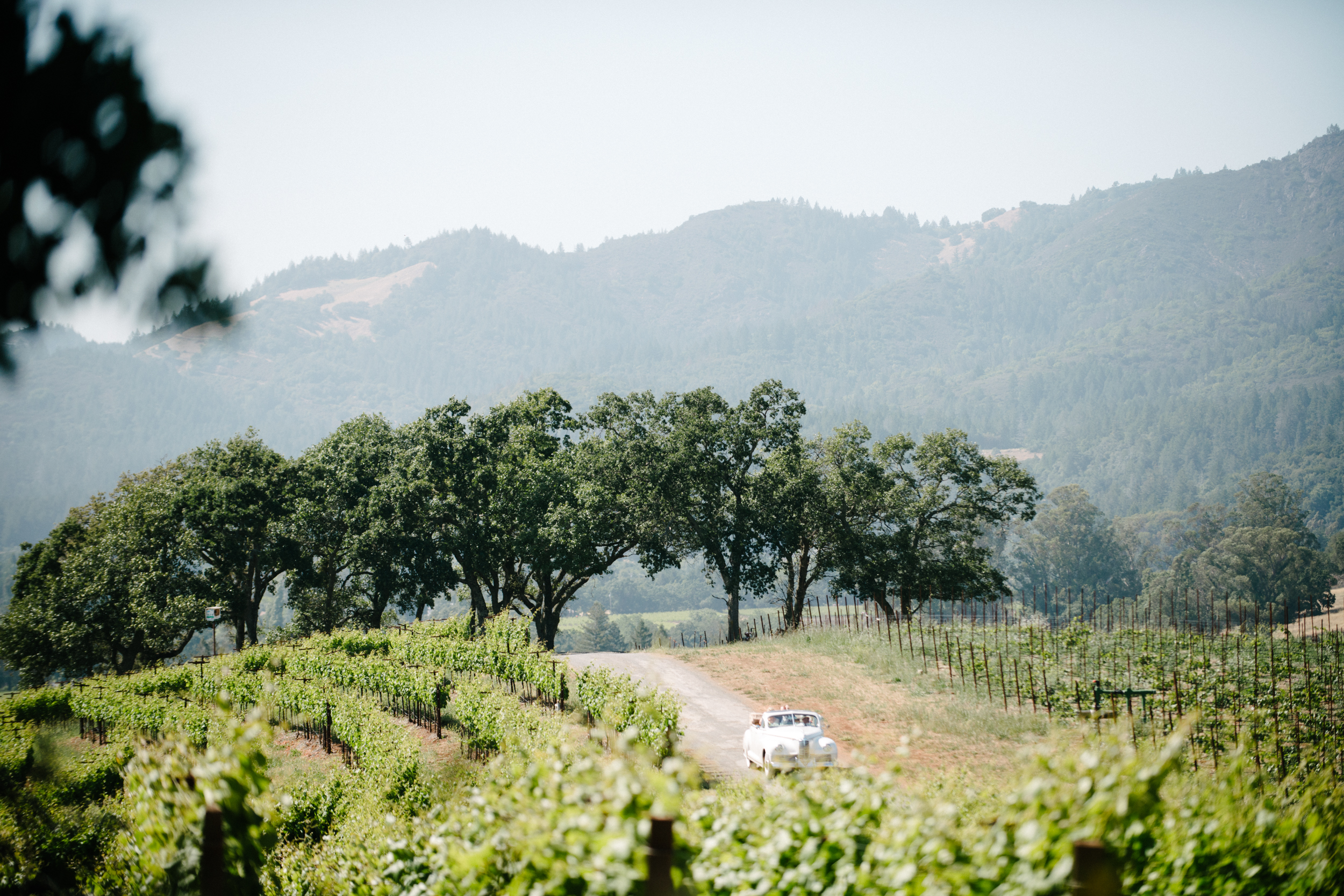 Sylvie-Gil-film-destination-photography-Kunde-winery-Napa-Valley-elegant-shabby-chic-bride-arrival-vintage-convertible