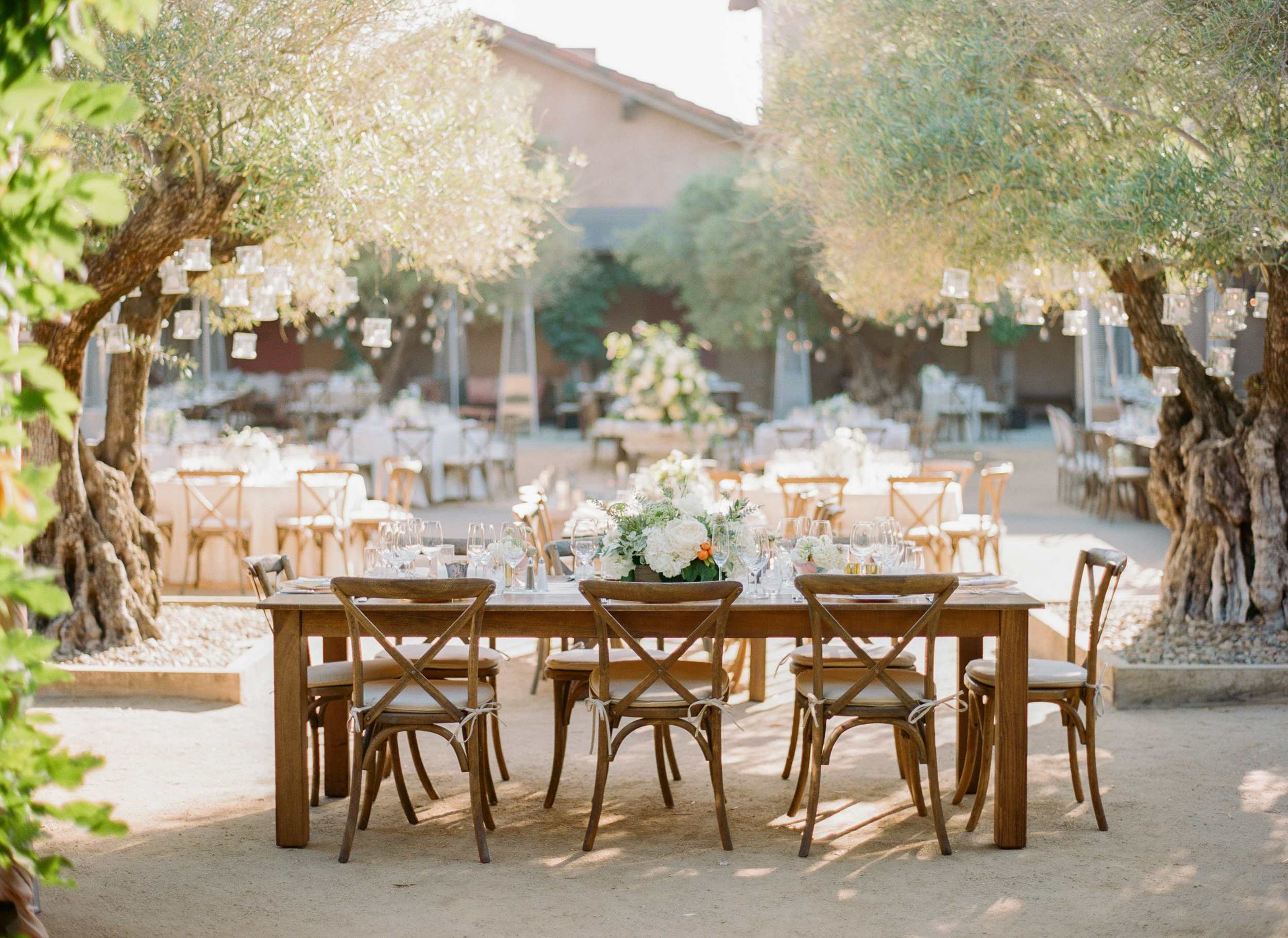 Tables of varying sizes arranged in an olive tree courtyard, a display of Italian vineyard elegance; photo by Sylvie Gil
